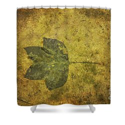 Shower Curtain featuring the digital art Leaf In Mud One by Randy Steele