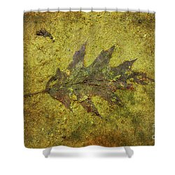 Shower Curtain featuring the digital art Leaf In Mud Two by Randy Steele