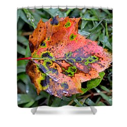 Leaf It Be Shower Curtain