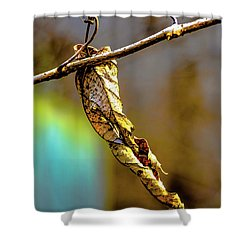 Shower Curtain featuring the photograph Leaf by Karen Kersey