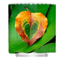 Leaf Leaf Heart Shower Curtain by Renee Trenholm
