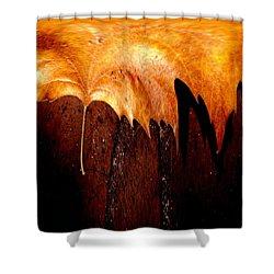 Leaf On Bricks 2 Shower Curtain by Tim Allen