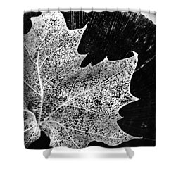 Shower Curtain featuring the photograph Leaf On Log In Black And White High Contrast by Kelly Hazel