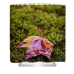 Leaf On Moss Shower Curtain