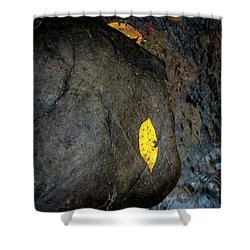 Leaf On Rock Shower Curtain