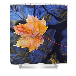 Leaf On The Water Shower Curtain