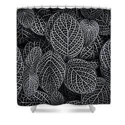 Shower Curtain featuring the photograph Leaf Pattern by Wayne Sherriff