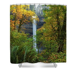 Leaf Peeping And Waterfall Shower Curtain by David Gn