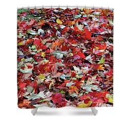 Leaf Pile Shower Curtain