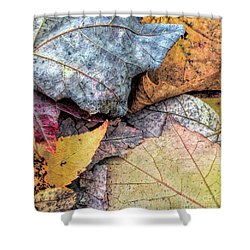 Leaf Pile Up Shower Curtain by Todd Breitling