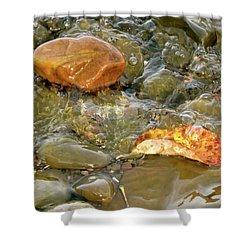 Leaf, Rock Leaf Shower Curtain