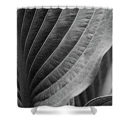 Leaf - So Many Ways Shower Curtain by Ben and Raisa Gertsberg
