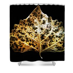 Shower Curtain featuring the photograph Leaf With Green Spots by Joseph Frank Baraba