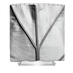 Leaf1 Shower Curtain