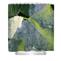 Calming Leafy Glade Shower Curtain