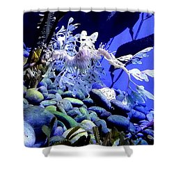 Shower Curtain featuring the photograph Leafy Sea Dragon by Kelly Mills