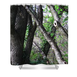 Lean On Me Shower Curtain by Donna Blackhall