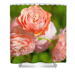 Leander English Rose Shower Curtain by Verena Matthew