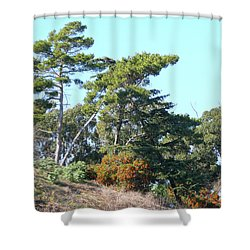 Leaning Trees On Hillside Shower Curtain
