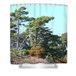 Leaning Trees On Hillside Shower Curtain