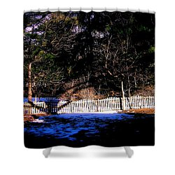 Leap Year Shower Curtain by Frank J Casella