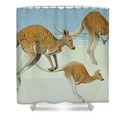 Leaping Ahead Shower Curtain