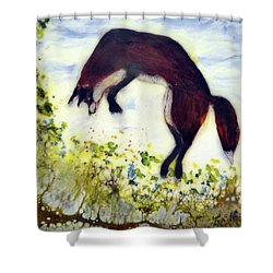 Leaping Fox 1 Shower Curtain