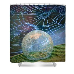 Learning Shower Curtain by John Glass