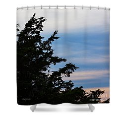 Least Tern At Sunset Shower Curtain by Michelle Wiarda