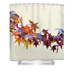 Shower Curtain featuring the photograph Leaves Of Many Colors by AJ Schibig