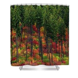 Leavenworth Checkerboard Shower Curtain