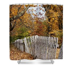 Leaves Along The Fence Shower Curtain by Lois Lepisto
