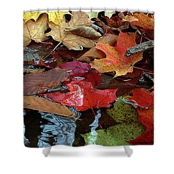 Leaves Of Color Shower Curtain