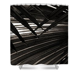 Leaves Of Palm Black And White Shower Curtain by Marilyn Hunt