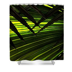 Leaves Of Palm Color Shower Curtain by Marilyn Hunt