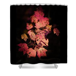 Shower Curtain featuring the photograph Leaves Of Surrender by Karen Wiles