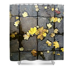 Leaves On Slate Shower Curtain