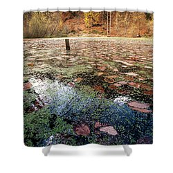 Shower Curtain featuring the photograph Leaves On The Lake by Okan YILMAZ