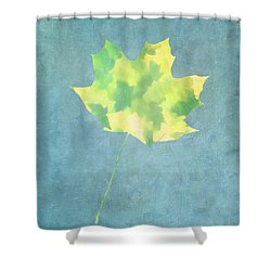 Shower Curtain featuring the photograph Leaves Through Maple Leaf On Texture 1 by Gary Slawsky