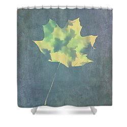 Shower Curtain featuring the photograph Leaves Through Maple Leaf On Texture 3 by Gary Slawsky
