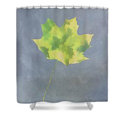 Shower Curtain featuring the photograph Leaves Through Maple Leaf On Texture 4 by Gary Slawsky