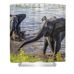 Leaving The River Shower Curtain