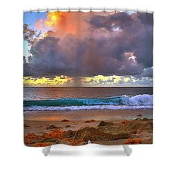 Left Behind - From Singer Island Florida. Shower Curtain