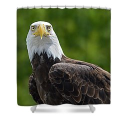 Shower Curtain featuring the photograph Left Turn by Tony Beck