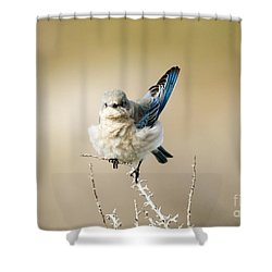 Left Wing Test Shower Curtain by Mike Dawson