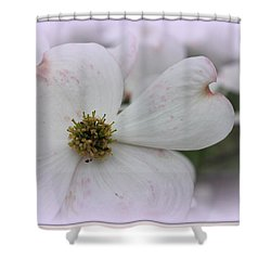 Legend Of The Dogwood Shower Curtain