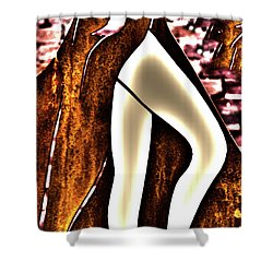 Legs_1 Shower Curtain
