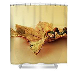 Leaf Plate 1 Shower Curtain by Itzhak Richter