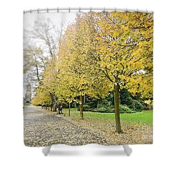 Shower Curtain featuring the photograph Leipzig Memorial Park In Autumn by Ivy Ho