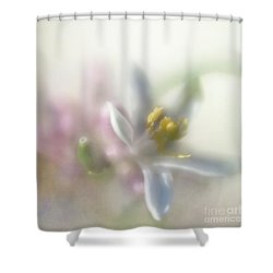 Shower Curtain featuring the photograph Lemon Blossom by Elena Nosyreva